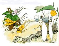 Hormiga Laboriosa