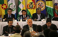 42 Reunion OEA